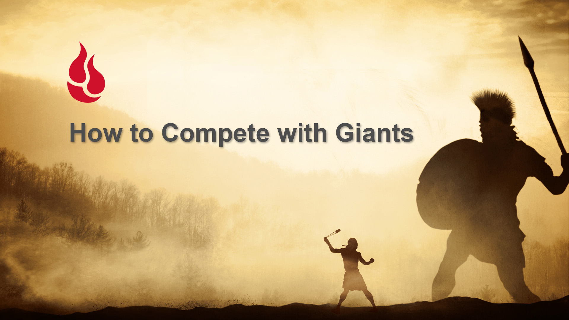 How to Compete with Giants