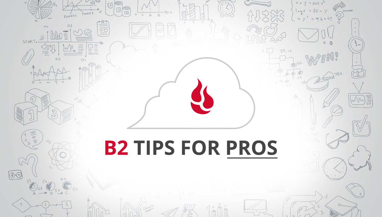 B2 Tips for Pros