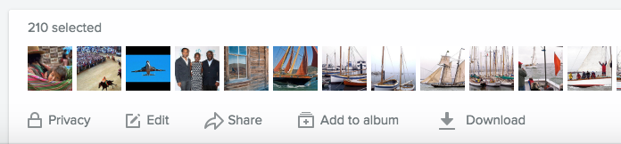 Flickr Camera Roll options