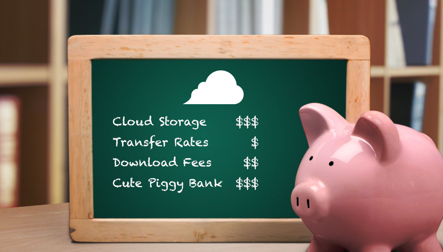 Cloud Storage $$$, Transfer Rates $, Download Fees $$, Cute Piggy Bank $$$