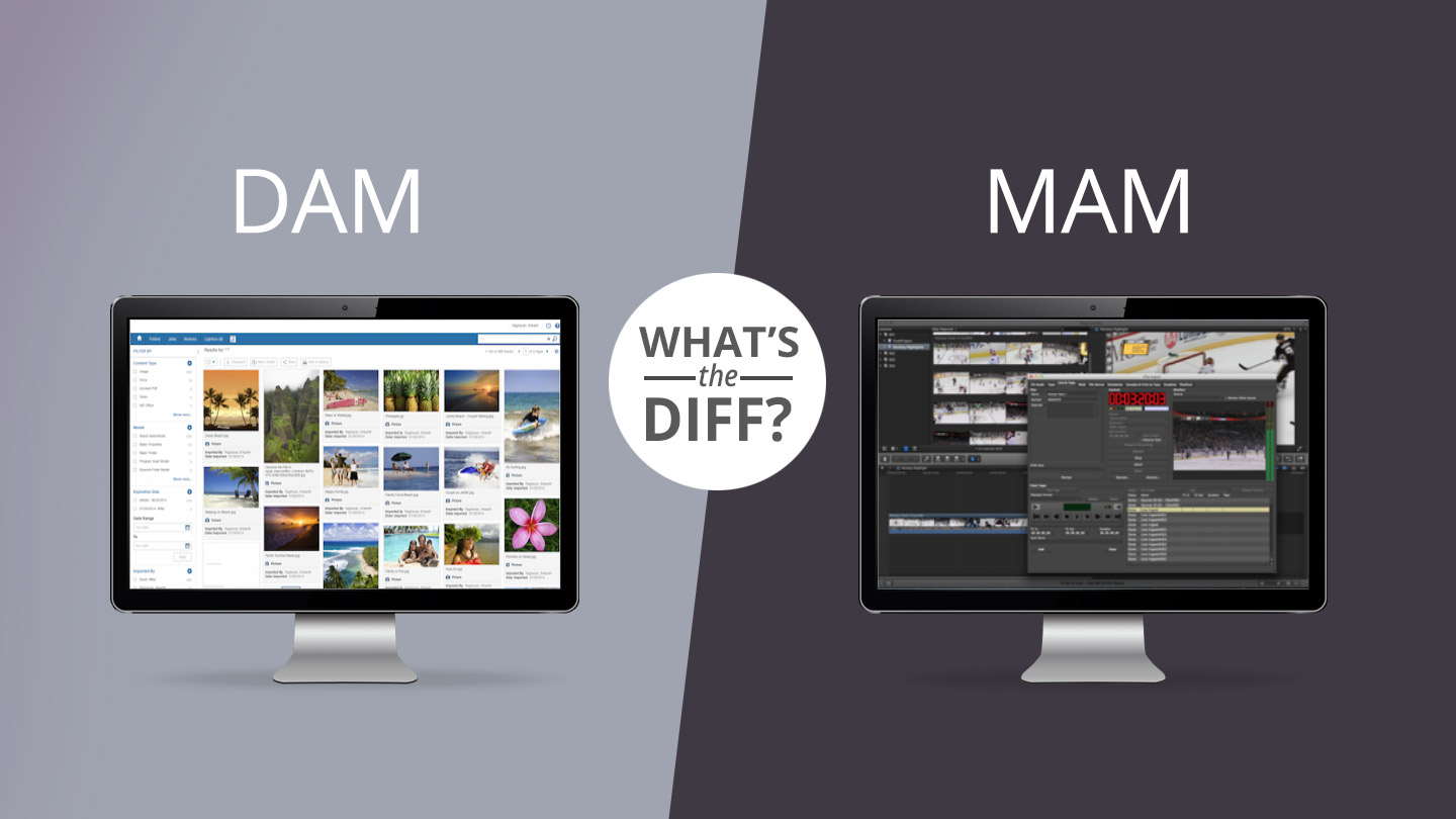 What's the Diff: DAM vs MAM