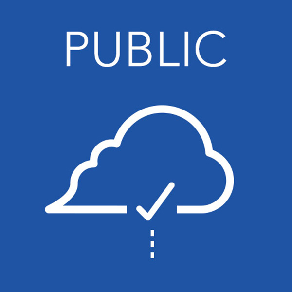 Public + cloud icon