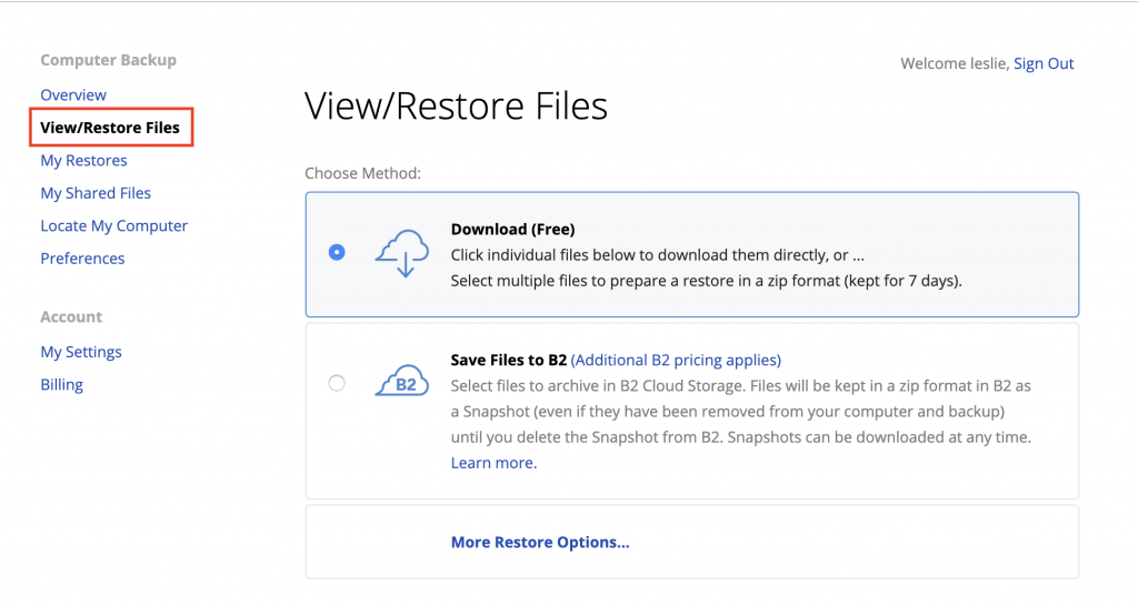 View and Restore Files